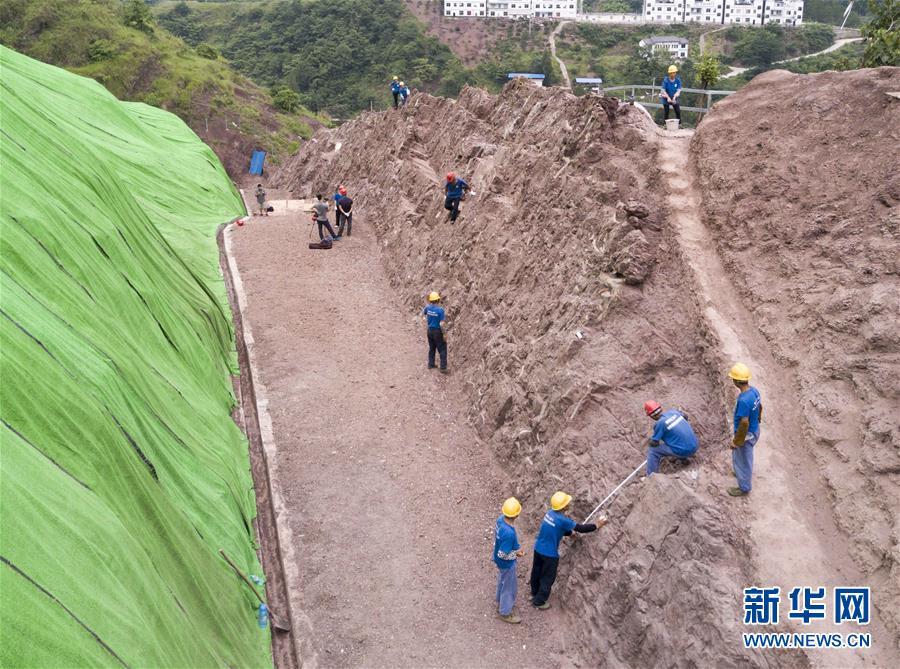 (科技)(7)重慶雲陽發現世界級恐龍化石群
