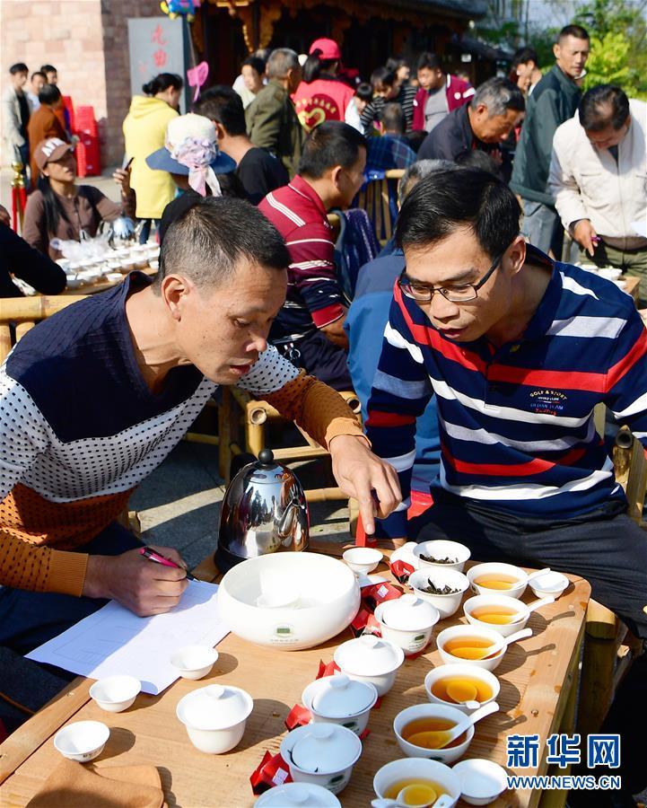 (社会)(2)武夷斗茶