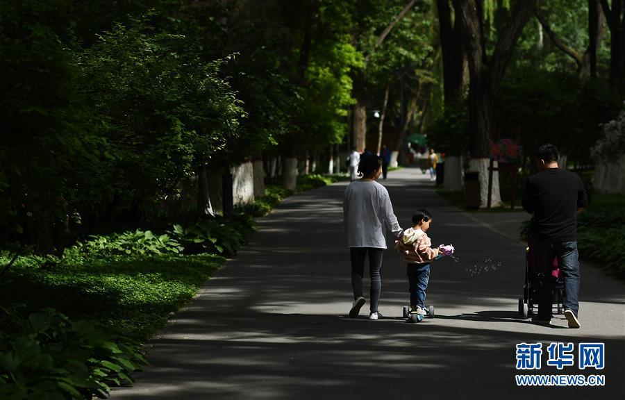 (社會)(1)假日樂遊園
