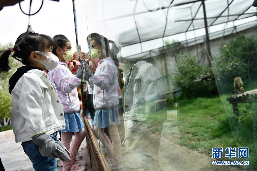 """(圖文互動)(2)青海西寧:和野生動物們共度""""六一"""""""