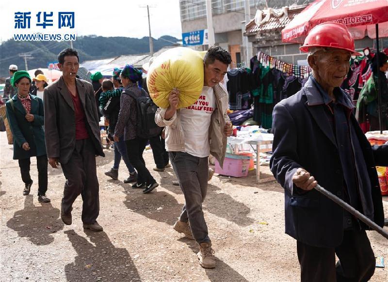 (圖片故事)(9)鄭吃合:從貧困戶到養豬專業戶