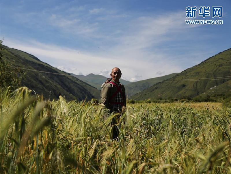 (新華全媒頭條·圖文互動)(6)命運的轉折——寫在四川甘孜藏族自治州建州70年之際