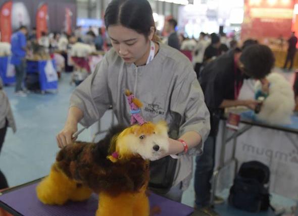 2017FCI亚洲杯犬展暨上海宠物节开幕