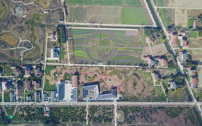 上海:生物技术助力农村污水处理