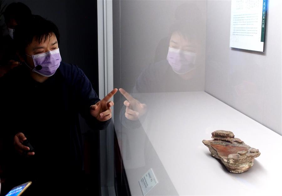上海博物馆将举办恢复开放后首个特展