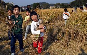 江西:貢米之鄉慶豐收