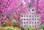 櫻景詩畫丨那些著名的賞櫻勝地