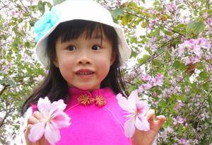 紫荊花開、孩童鬧春……在花城裏與時光淺語