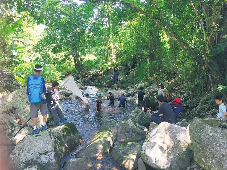 最好的生態研學課堂在哪裏?三探鸚哥嶺找到答案
