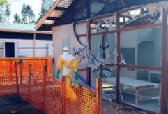 世衛組織:埃博拉疫情暫不升級為全球緊急狀態