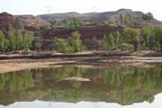 德州濱州旱情重 山東調劑3.4億方黃河水應急抗旱