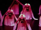 浙江歌舞劇院《生命·舞跡》演出在羅馬尼亞再獲成功
