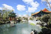 敬孔子、登泰山、賞牡丹…走進北京世園會山東園