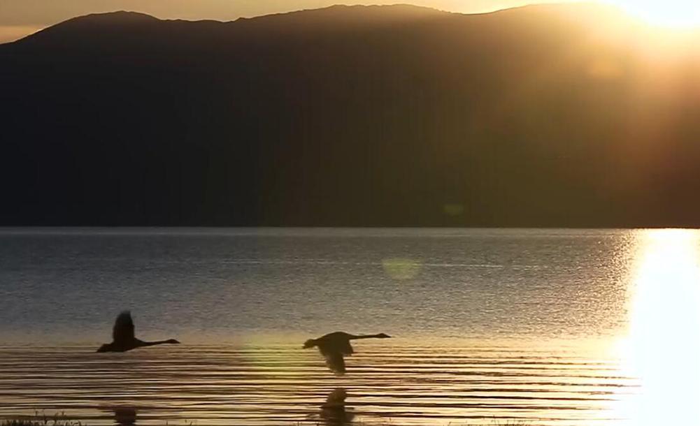 【新疆是個好地方】神山聖水·西域泉都——溫泉