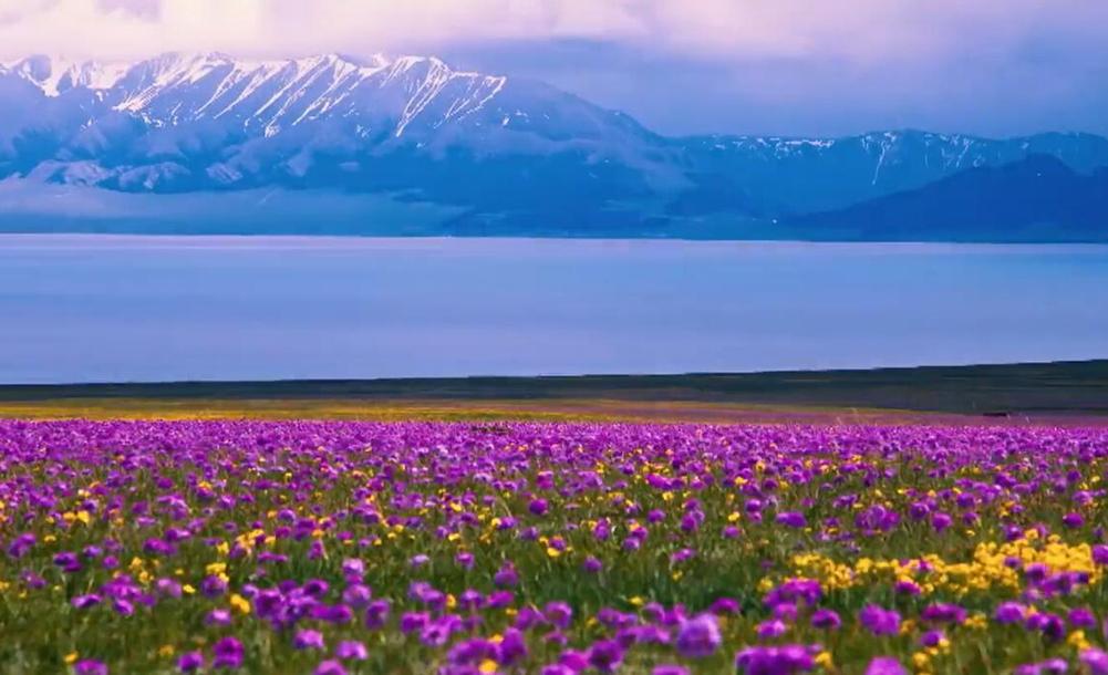 【新疆是個好地方】靈壤博樂—印象博州