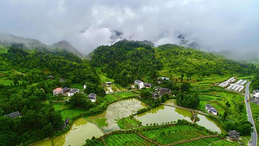 湖北啟動鄉村綠化美化行動 今年建成300個國家森林鄉村