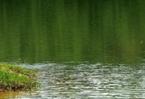 福建省下達4億資金持續改善汀江流域水環境質量