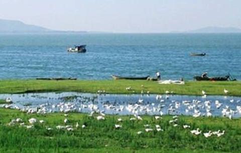 巢湖流域將實施全流域生態補償