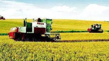 長春市加快構建新型農業經營體係