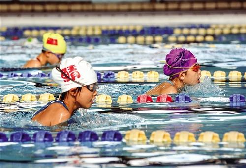 三百遊泳高手決戰市運會