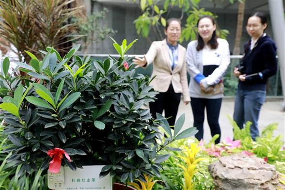 北京世園會200余個特有珍稀植物品種搬入北京植物園