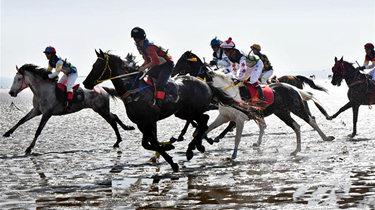 青島:策馬揚鞭 海灘競速