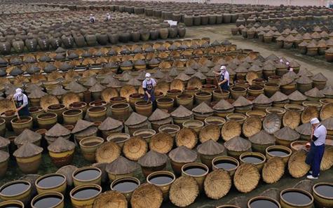 探訪貴州赤水曬醋