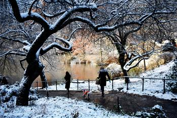 紐約:中央公園首場雪景迎遊客