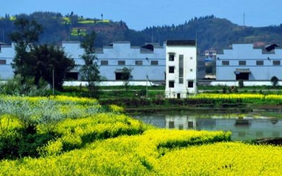 到2020年底 四川縣級以上文明村鎮佔比達50%以上