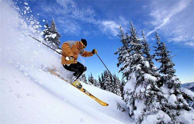 吉林省推動冰雪運動和冰雪産業發展紀實