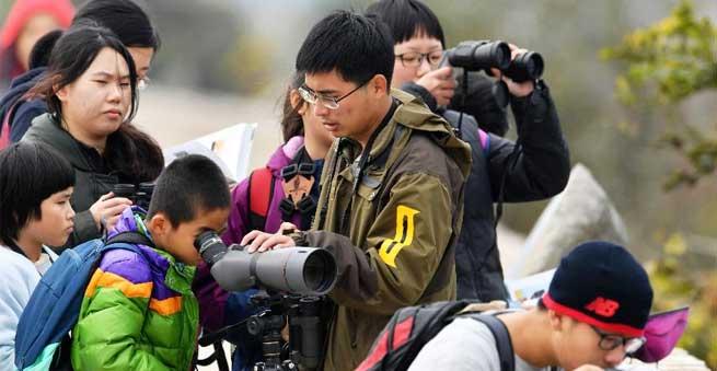 福建:閩江口濕地觀鳥 探索濕地自然