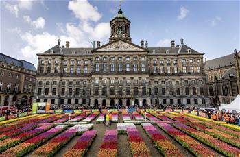 荷蘭慶祝鬱金香日