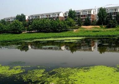 鄭州晉級國家生態園林城市