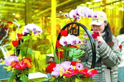 多肉植物尤其受寵 今春年宵花保持平價凸顯個性