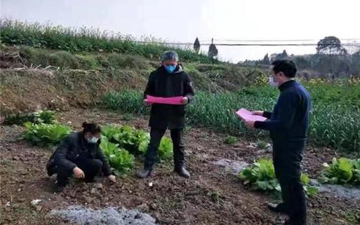 備農資、學農技——川中丘陵農村疫情防控期間春耕忙