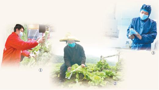 超市、蔬菜基地、醫械公司加班加點 各方全力保供
