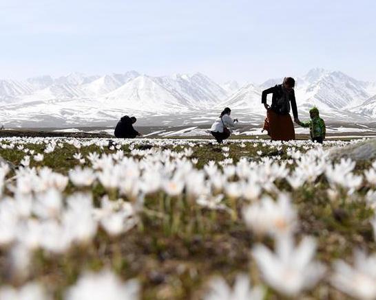 新疆的美景在等我們……