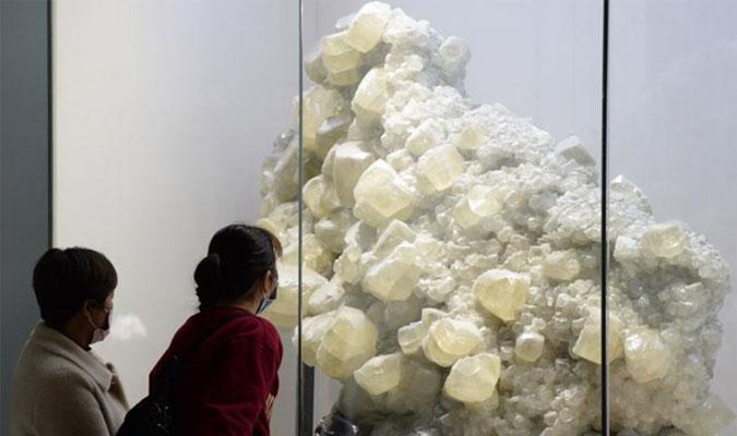 安徽省地質博物館恢復開放
