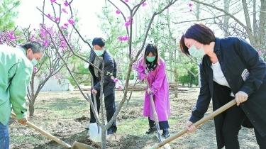 豐臺區王佐鎮開展植樹種綠活動