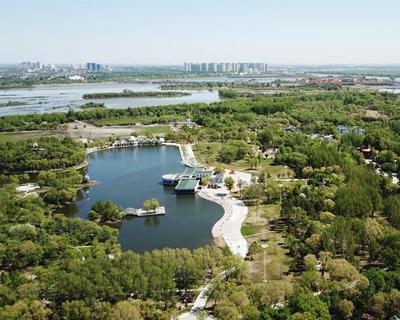 哈爾濱:濕地展畫卷