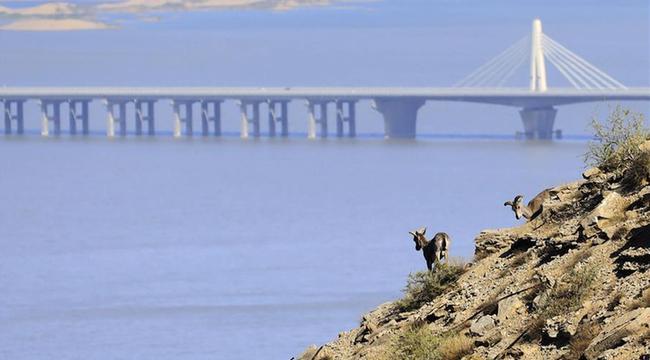 """內蒙古:甘德爾山上的岩壁""""精靈"""""""