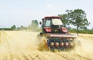 鄭州市小麥收獲已過九成