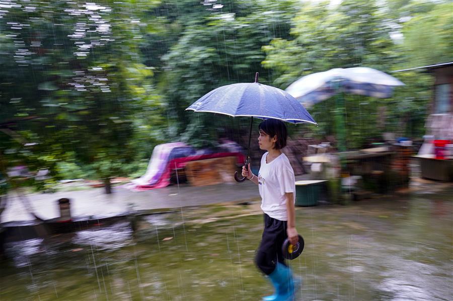 重慶永川:雨中逆行者 守護百姓安全的地質災害監測員