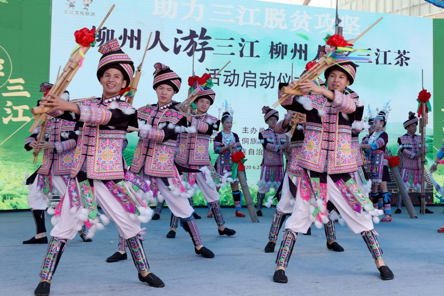 廣西三江:茶旅融合助脫貧