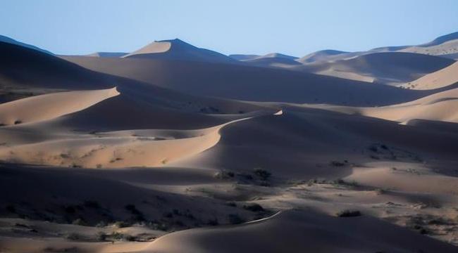 騰格裏沙漠夏日即景