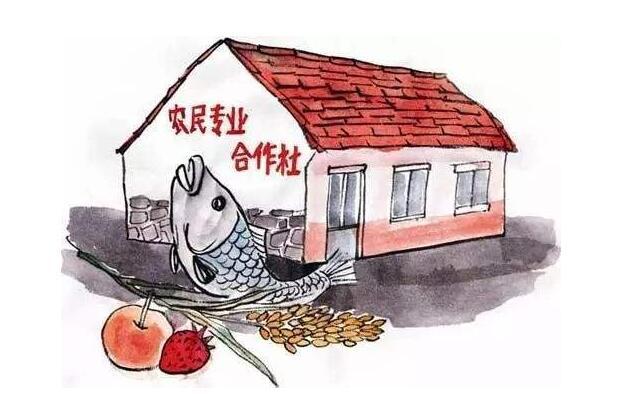 陜西12舉措解決農民合作社融資難
