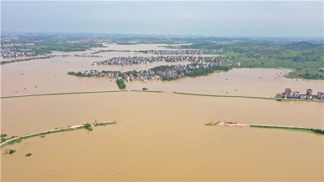 江西鄱陽昌洲鄉中洲圩決口開始封堵