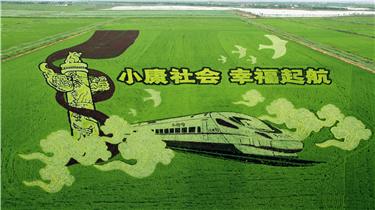 山東東營鹽鹼地上種出3D稻田畫