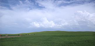 """【幸福花開新邊疆】""""國家的孩子""""扎根草原60年 見證綠色家園的變與不變"""