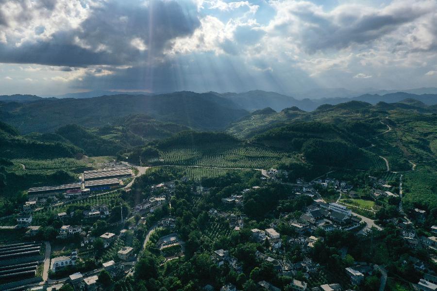 走向我們的小康生活|貴州海雀村:將綠水青山變成戰勝貧困的金山銀山